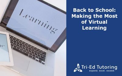Back to School: Making the Most of Virtual Learning
