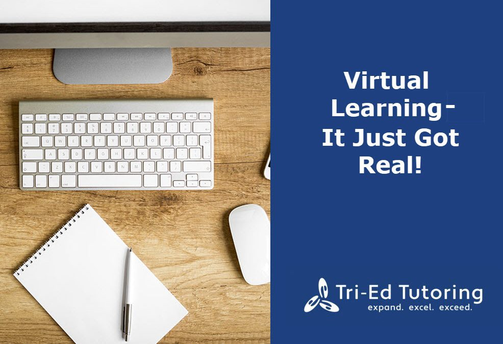 Virtual Learning- It Just Got Real!